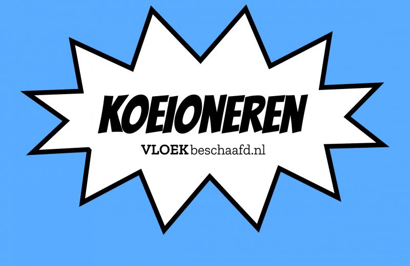 Koeioneren